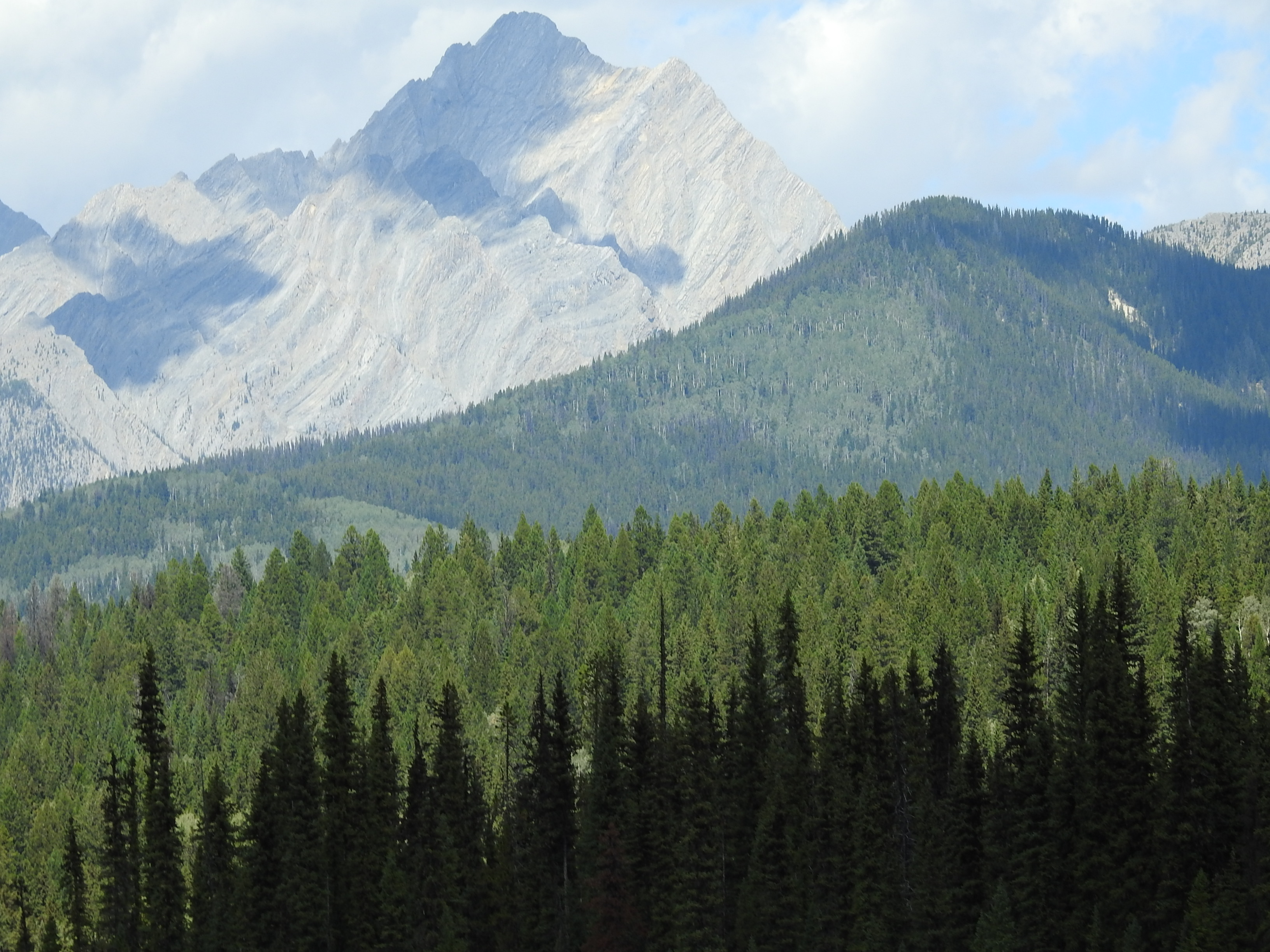 Coming Into Banff